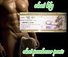 pin by obat pembesar penis on obat pembesar penis alat vital