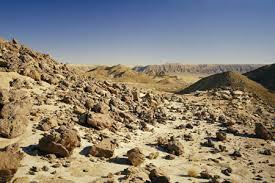 stone desert didi cutler photography