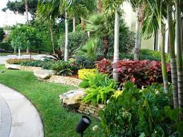 Florida Landscaping Ideas by Garden Design With The Best Pictures Of Landscape Plants Top