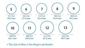 size 9 ring size 13 ring urlifein pixels