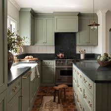 colored kitchen cabinets with black countertops 75 beautiful kitchen with green cabinets pictures ideas