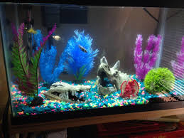 nemp fishtank search throne room inspirations and ideas