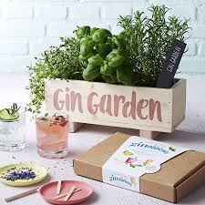 Wall Garden Kits by Gin Botanical Cocktail Garden Kit By Plant And Grow