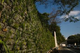 How To Build Vertical Garden - gallery of how to build a diy vertical garden 5