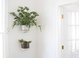 ring wall mount yield