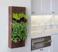 Wall Mounted Planters by 15 Phenomenal Indoor Herb Gardens