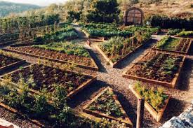 Backyard Vegetable Gardening by Backyard Vegetable Garden And Landscaping Nwkbhgw Decorating Clear