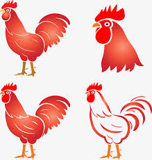 rooster design year of the rooster zodiac png image and