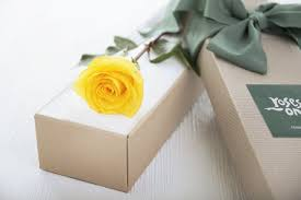 single delivery single delivery white flowers online florist ny