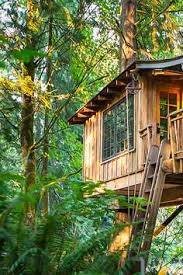 Treehouse Point Wa - treehouse point issaquah roadtrippers
