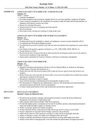 executive director resume associate executive director resume sles velvet