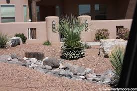 southwest landscaping ideas sotols and other desert plants don u0027t