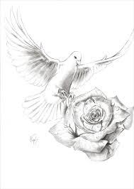 25 rose drawings art ideas design trends premium psd