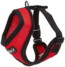 amazon pet supplies black friday amazon com puppia soft dog harness red small pet leashes