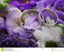 white gold and purple wedding two white gold wedding rings on purple bouquet stock photo image