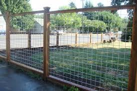 backyard dog fence
