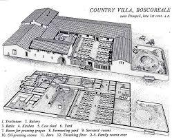 roman insula floor plan mediterranean houses and society