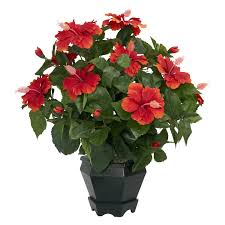 thanksgiving flowers free shipping hibiscus with black hexagon vase silk plant free shipping today