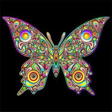 beautifull psychedelic butterfly design trippy butterfly