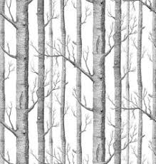 10 excellent sources for buying birch tree wallpaper birch tree