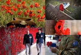 remember them with these traditional anzac day flowers tesselaar