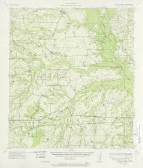 New Mexico Topographic Map by