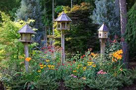 must haves for a bird friendly backyard pro home stores