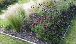 12 best ornamental grasses for landscaping