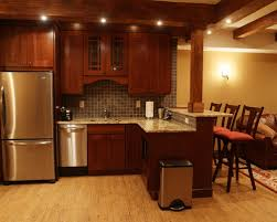 basement kitchen ideas basement kitchen designs bar 7