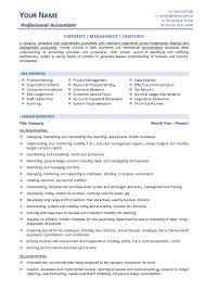 Resume Core Qualifications Examples by Example Of Accountant Resume
