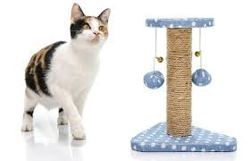 best toys for cats the munch zone