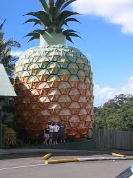 pineapple big pineapple wikipedia