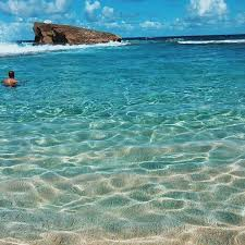 Vermont do you need a passport to travel to puerto rico images 358 best puerto rico and other places images puerto jpg