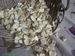 cuisiner des feves seches macco de fèves ou soupe de fèves sèches la conque d or