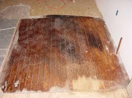 cleaning hardwood floors pleasant wood floor cleaner inspire
