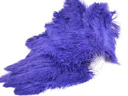 burlesque fans ostrich feather fans dyed costume feathers
