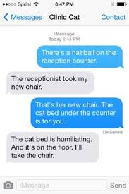 more texts from your veterinary clinic cat firstline funny