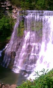 plants native to tennessee 36 best waterfalls retire tennessee images on pinterest