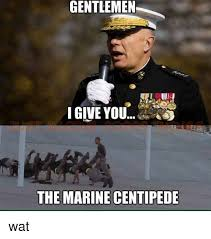 Memes Wat - ilemen gentlemen i give you the marine centipede wat meme on sizzle