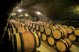 Burgundy Wine Cellar - wine tasting vineyards in france albert bichot burgundy