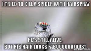 Funny Spider Meme - fabulous spider by paranoid rabbit meme center