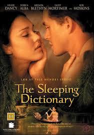 Từ Điển Phòng The Sleeping Dictionary