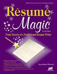 Making A Professional Resume Best 25 Professional Resume Writers Ideas On Pinterest Resume