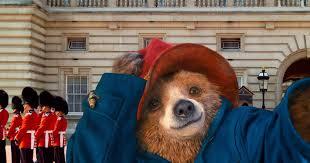 paddington bear hoover public library