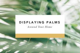 palms for palm sunday ideas for displaying palm sunday palms around your home
