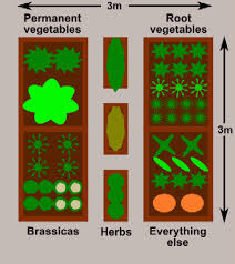 raised bed vegetable gardens plan for a 3x3m 10x10ft plot