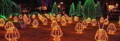 coloful changin 20 led solar micro led string lights christmas