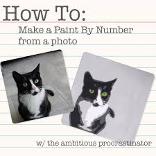 the ambitious procrastinator diy paint by numbers