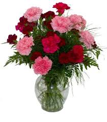 birthday flowers for birthday flowers for january carnations