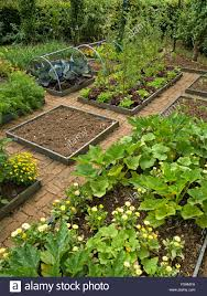 raised bed gardens stock photos u0026 raised bed gardens stock images